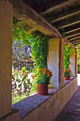 Carmel Mission Portico Plants