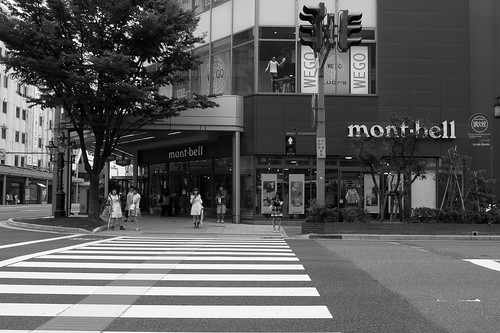 niigata monochrome 11