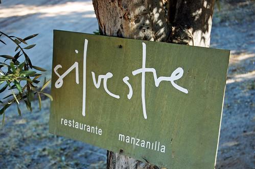Silvestre Ensenada