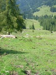 JD501387 (seillift) Tags: kaiser wilder kufstein lsap steinbergalm