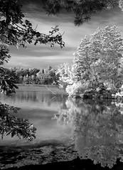 Lake Wazeecha - infrared (Teri Bertin Images) Tags: blackandwhite monochrome wisconsin photoshop canon5d digitalmanipulation wisconsinrapids lakewazeecha fauxinfrared teribertin