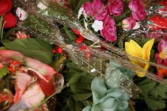 loja chinesa n 3... (bruce grant) Tags: flores geotagged canad falsas lojachinesa colmbiabritnica geo:lat=4928685 pelascores vancver geo:lon=123141042
