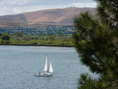 Columbia River Boat Sailing