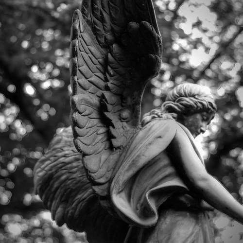 Engel von Altenwerder