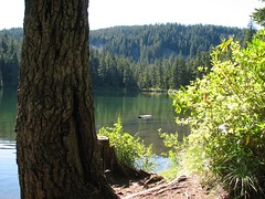 Hideaway Lake (Ripplebrook, Oregon, United States) Photo