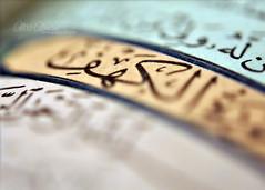 explored* (alaa al.mane's Photography ♥) Tags: nikon d90 الجمعة aloosh سورة الكهف abcgroup