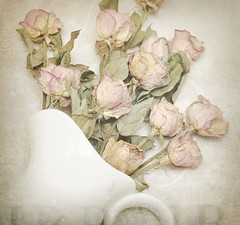 Spilling Roses (luvpublishing) Tags: flowers roses texture floral vintage memories overlay layers pitcher picnik spilled driedflowers driedroses whitepitcher fauxvintage pbn explored ortonish memoriesbook softdreamyandethereal preservedmemories
