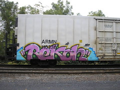 RECON (penis wrinkle) Tags: train graffiti freight recon benched