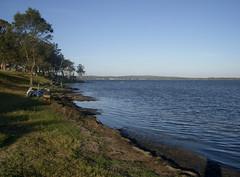 lake_munmorah_shore (John Lampard) Tags: lakes australia nsw centralcoast budgewoi