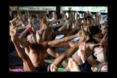 Ashtanga Yoga Sharath 2009 Tour (yogasurf) Tags: travel bali yoga indonesia 2009 asana ashtanga yogasurf