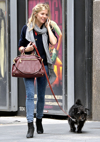 58615_Preppie_-_Sienna_Miller_walking_her_dog_in_New_York_City_-_October_21_2009_872_122_487lo