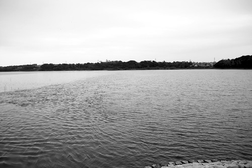 佐鳴湖公園-Lake Sanaru Park