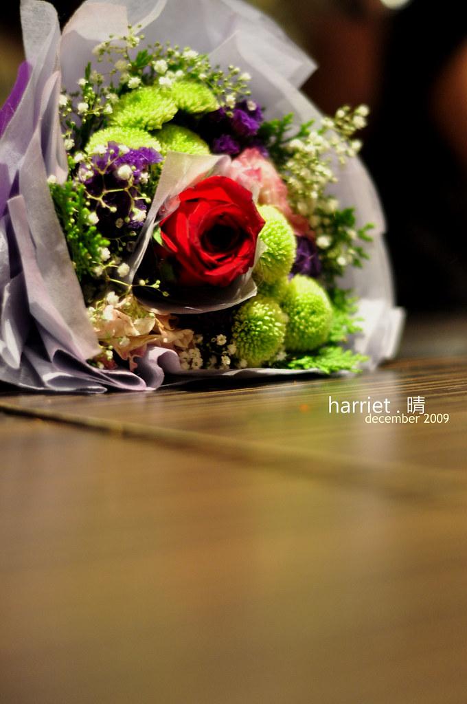 harriet14