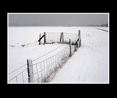 Landscape (Theo Kelderman) Tags: winter white snow haarlem netherlands canon fence landscape sneeuw nederland wit 2009 landschap hek schalkwijk molendehommel theokeldermanphotography verenigdepolders