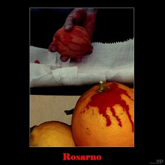 Bloody Oranges and Human Rights (Osvaldo_Zoom) Tags: italy blood workers rights immigrants oranges bloody humanrights slavery racism calabria mafia explotation ndrangheta rosarno nowage hiddenwork