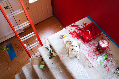 Red Paint Incident