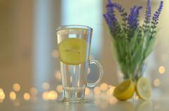 Lemon and Lavender Tea.. (KissThePixel) Tags: tea herb herbs lavender lemon lemons fruit bokeh refresh fresh refreshing inmykitchen afternoon cupoftea glass reflection flowers 14 50mm