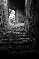 The Way Out (belleshaw) Tags: door blackandwhite abandoned stairs climb bars bokeh steps walls griffithpark 50mmf18 oldlazoo