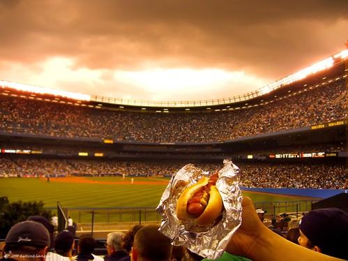 hail to the hotdog