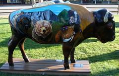 "Part of the ""Where the Painted Buffalo Roam"" exhibit, West Yellowstone, Montana (IMG_1576a) (Alaskan Dude) Tags: travel art buffalo montana wildlife westyellowstone paintedbuffalo wherethepaintedbuffaloroam"