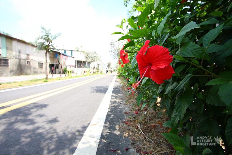 9807-潭雅神自行車道_014.jpg