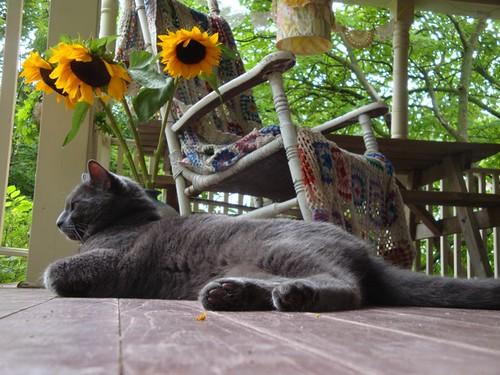 happy porch monday