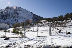 IMG_8064 (Miguel Angel Mora (GSi_PoweR)) Tags: espaa snow andaluca carretera nieve nevada sunday bosque granada costadelsol domingo maroma mlaga mountainroad meteorologa axarqua puertomontaa zafarraya sierraalmijara caosalcaiceria