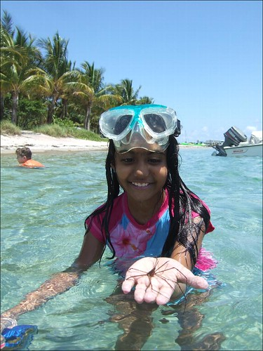 Meher with an Arrow Crab!