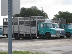 Rockledge Freightliner / G.S. Recycling Trucks (FormerWMDriver) Tags: new old public trash truck garbage florida rubbish works fl division refuse recycle recycling sanitation freightliner rockledge