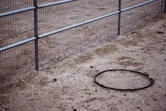 the desert is ugly, but it's better when overcast 5 (deflam) Tags: summer arizona brown abandoned toy desert overcast august dirt ugly wittmann huluhoop