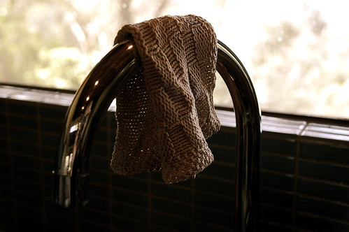 wet dishrag
