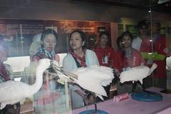 IMG_5277 (TEIA - 台灣環境資訊協會) Tags: 七股 生態工作假期 護沙