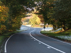 Road and Trees (markgoodge) Tags: autumn nature autumngold themedalbums