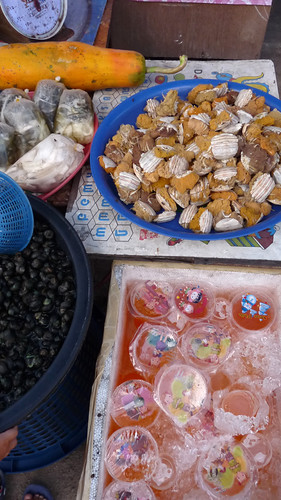 Koh Samui Nathon Market コサムイ ナトン市場0