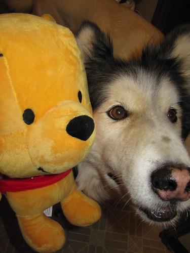 pooh and nuki