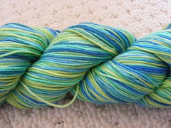 The yarn yard toddy blues/greens