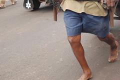 Cart Puller (Kakgda) Tags: konkan