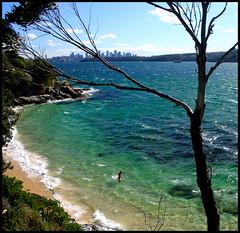 Plage naturiste (stef974run) Tags: ferry bay flag sydney australia cte plage phare australie baie lifesaving ocan littoral pacifique smaphore naturiste bommert nudiste