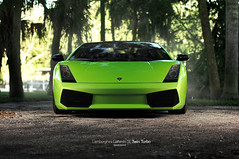 Lamborghini Gallardo SE Twin Turbo (oskarbakke) Tags: usa tree green car sport america se 1 nikon florida wheels performance fast twin super turbo carbon fiber 50 lamborghini gallardo lambo d300 heffner superleggera itallian sigam dymag 41020 900hk