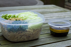 packing Chicken and Cucumber Pasta Salad