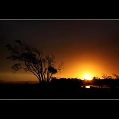 Northdown Sunset... (Mary Trebilco) Tags: light sunset sky sun reflection tree nature water silhouette clouds canon australia tasmania northdown skyascanvas vosplusbellesphotos canoneos1000d
