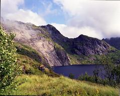 (kristians) Tags: lake mountains mamiya film nature grass norway norge scan epson lofoten mamiya7 v700