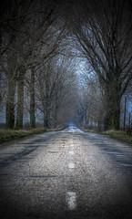 Roads of death (AragianMarko) Tags: outstandingromanianphotographers