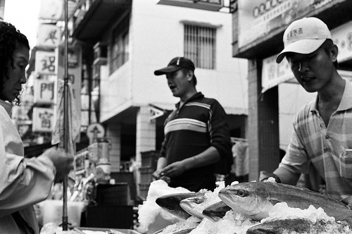 魚 (by 小帽(Hat))