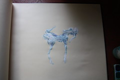 a driftwood stallion