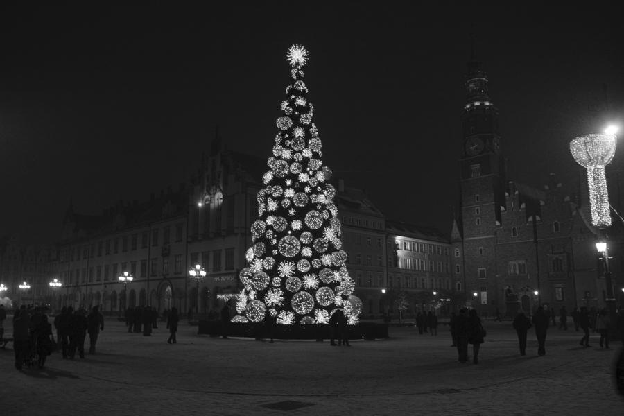 Wrocław '10 / frosty night