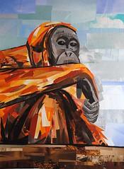 What Are You Looking At? (Megan Coyle) Tags: orangutan monkey orange primate orangutanart animals zoo zooart nationalzoo animalart art collage collageart magazinecollage paperart papercollage illustration paintingwithpaper megancoyle cutandpaste