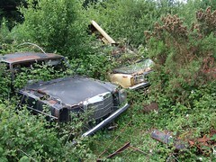 Two old companions in the bushes (Scrawb) Tags: ireland cortina mercedes junkyard scrapyard kildare oldmercedes oldrustycars mercedescars oldfordcortina rustcars carsinscrapyard fordcortinamk4 oldcortina rustycortina rustymercedes