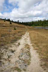 Autour du lac des Pises (Lozère, Cévennes)