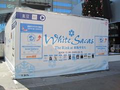 White Sacas 活動